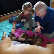 Tim Mark en de pups