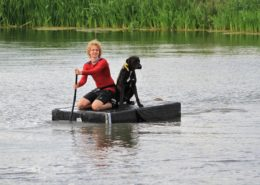 Dogsurvival Barendrecht 2017 - Hillse Mastiffs