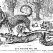 dog-fashions-1889