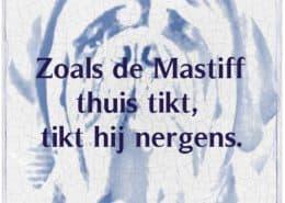 inteelt mastiff